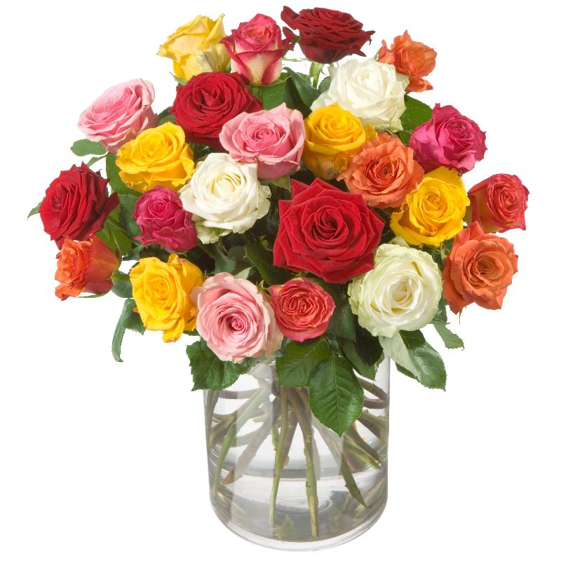 Colorful Bouquet of Roses (24 roses)