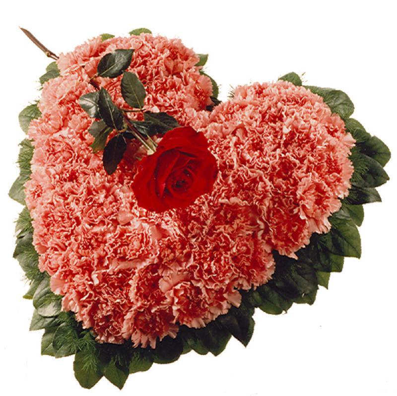 Bouquet de fleurs Arrangement: Heart with Carnations