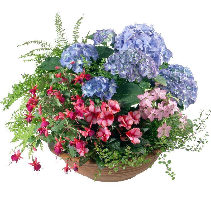Bouquet de fleurs Delicate Outdoor Bowl