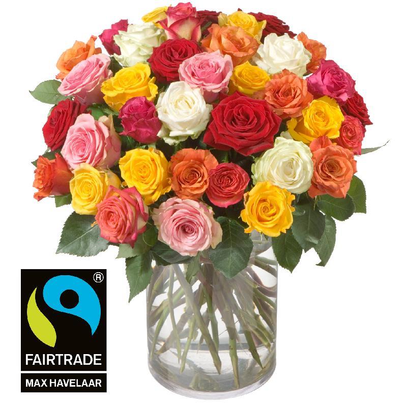 36 Mixed Fairtrade Max Havelaar-Roses