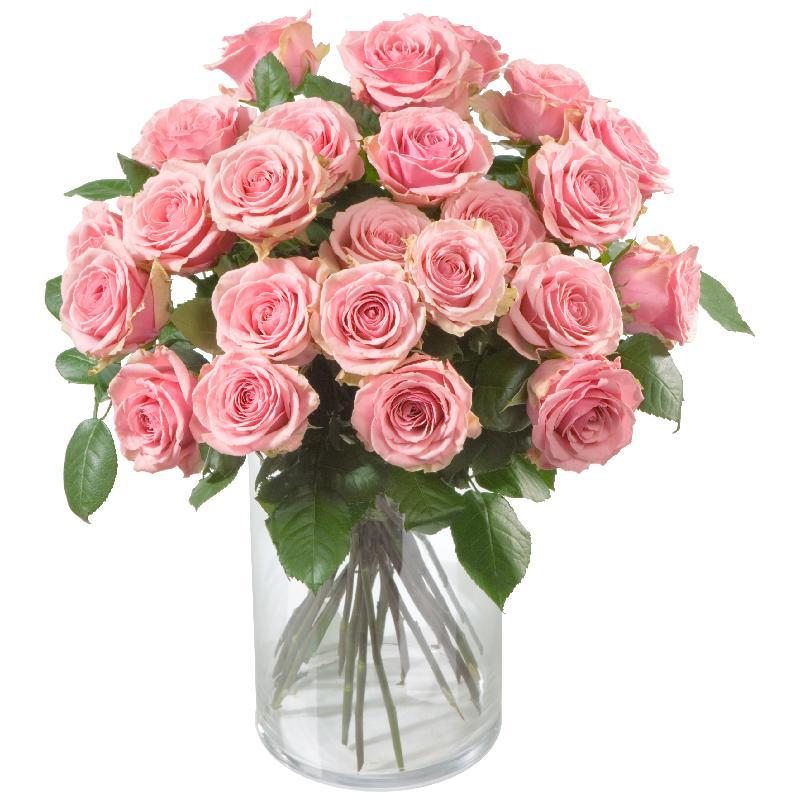 Bouquet de fleurs 24 Pink Roses