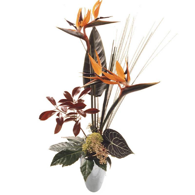 Bouquet de fleurs Birds of Paradise