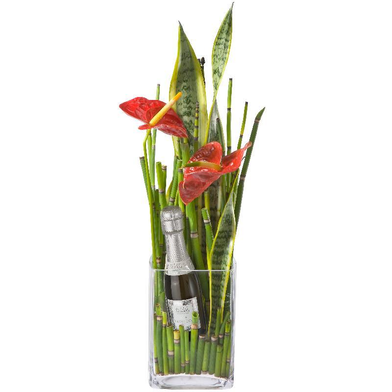 Bouquet de fleurs Little Fireworks with Prosecco Albino Armani DOC (20cl)