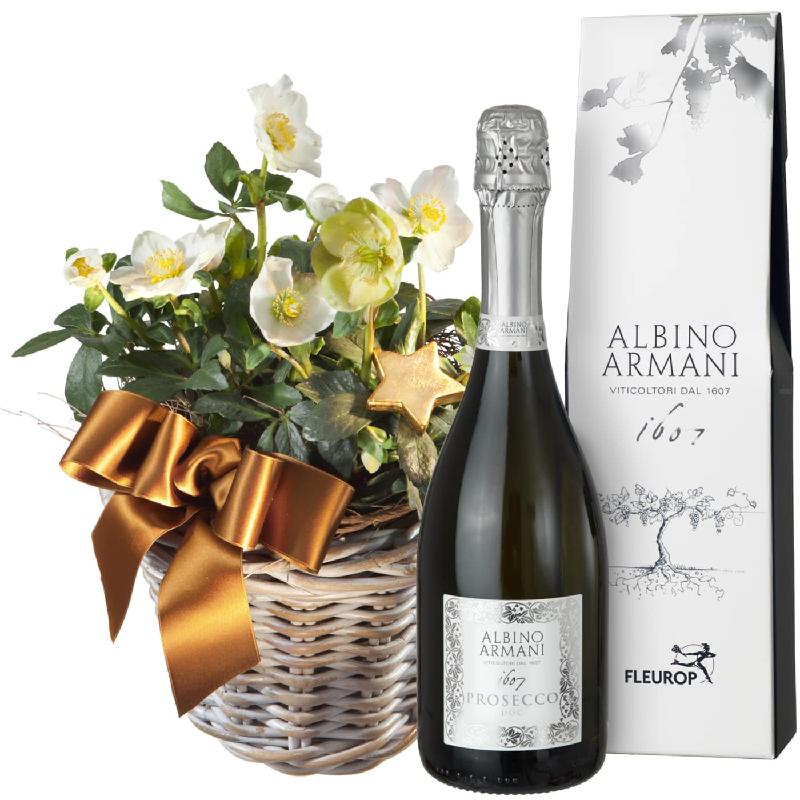 Bouquet de fleurs Splendid Christmas Roses in a Basket (planted) with Prosecco