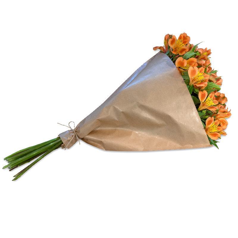 Bouquet de fleurs Bundle of orange Alstroemeria