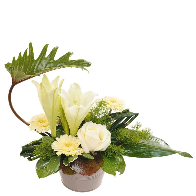composition florale de roses et amaryllis composition florale d licat blanche interflora. Black Bedroom Furniture Sets. Home Design Ideas