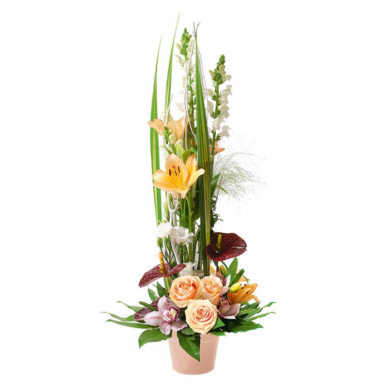 composition florale mufflier et anthurium composition. Black Bedroom Furniture Sets. Home Design Ideas