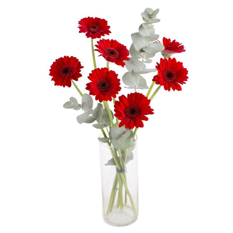 Bouquet de fleurs Colorful life
