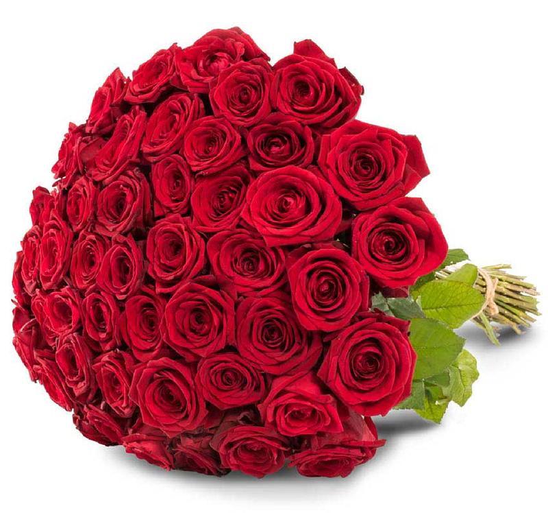 Bouquet de fleurs 50 red roses