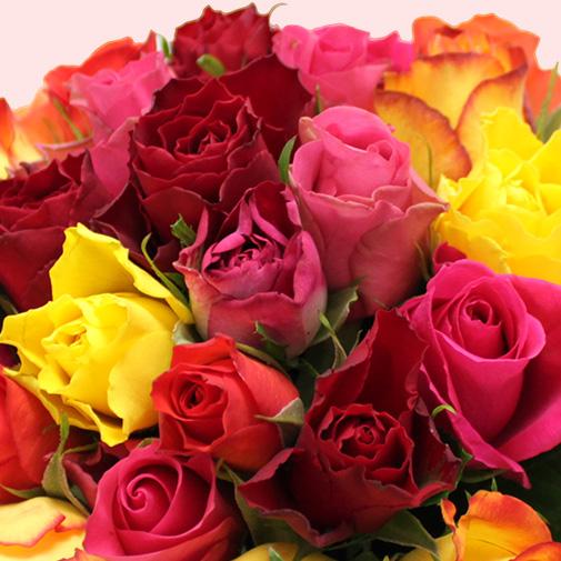 Bouquet de fleurs Brassée de 30 roses multicolores Max Havelaar