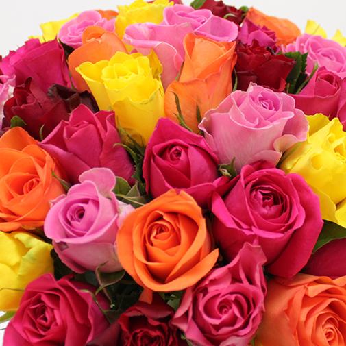 Bouquet de roses Bouquet de roses multicolores +10 roses offertes