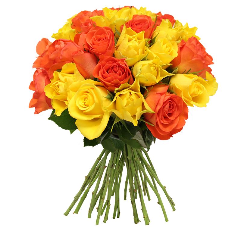 Brass e de 30 roses jaune orang les roses de flora for Fleuriste livreur