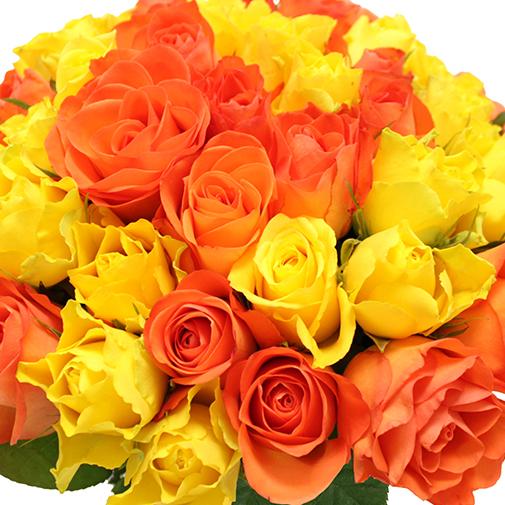 Brass e de roses jaune orang de 30 50 roses for Fleuriste livreur