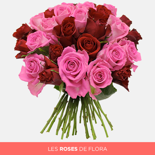 Brass e de 30 roses rouge rose les roses de flora for Fleuriste livreur