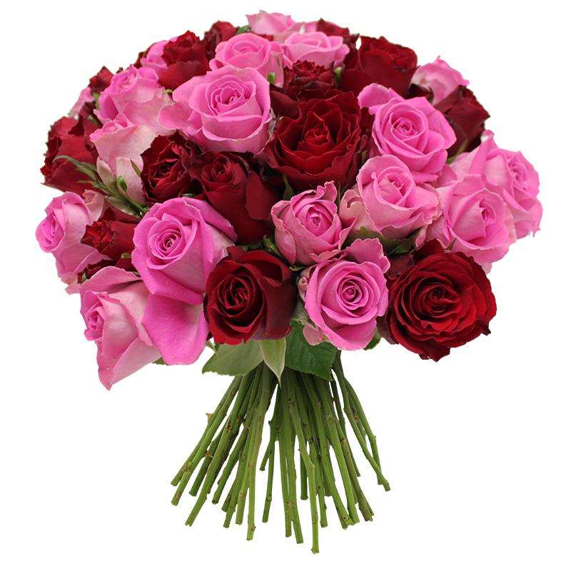Brass e de 40 roses rouge rose les roses de flora for Fleuriste livreur