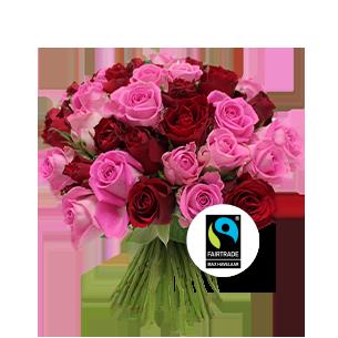 Bouquet de roses Brassée de roses roses Max Havelaar Amour