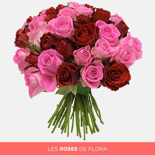 Bouquet de roses Brassée de roses roses et rouges + 10 roses offertes