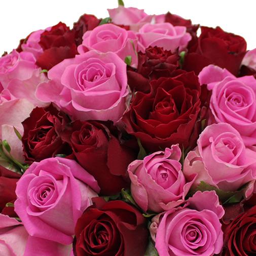 Bouquet de roses Brassée de roses roses et rouges + 10 roses offertes Max Havelaar