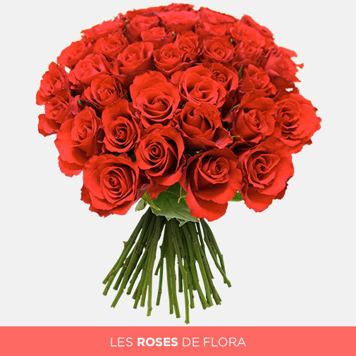 Bouquet de roses Brassée de roses rouges + 10 roses offertes