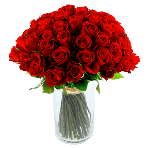 Bouquet de fleurs Brassée de 101 roses rouges Max Havelaar
