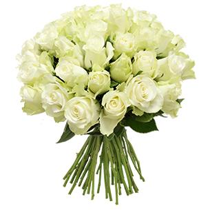 Bouquet de roses blanches +10 roses offertes - interflora