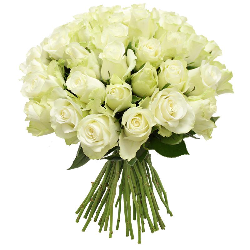 Quelque chose de nouveau assez Bouquet de roses blanches +10 roses offertes | Interflora #LK_79