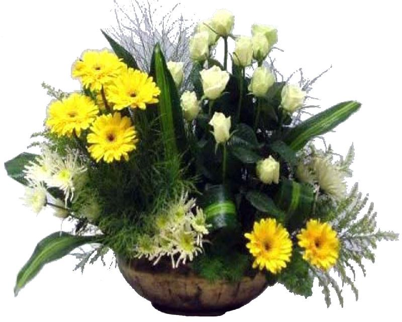 Bouquet de fleurs Golden Dream