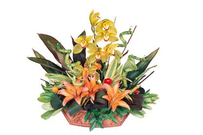 Bouquet de fleurs Seasonal Arrangement