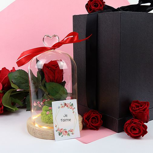 null Rose sous cloche lumineuse