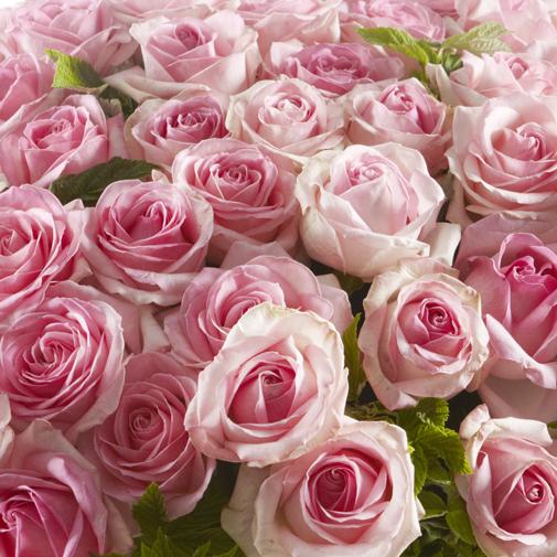 Bouquet de fleurs Délicatesse