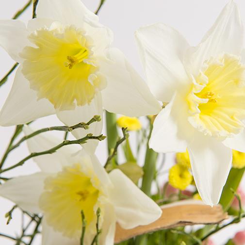 Bouquet de fleurs Hirondelle