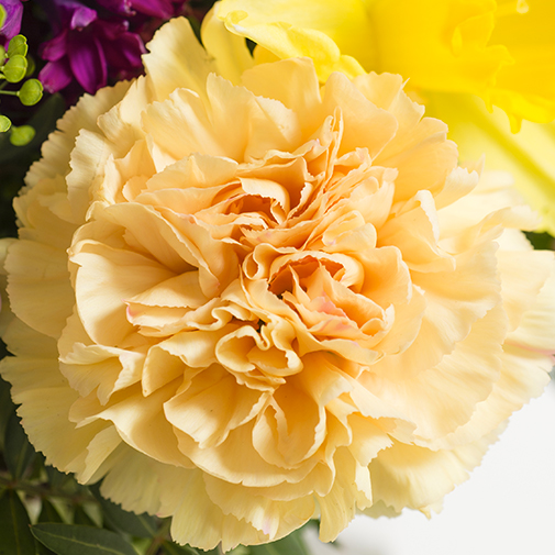 Bouquet de fleurs Mésange
