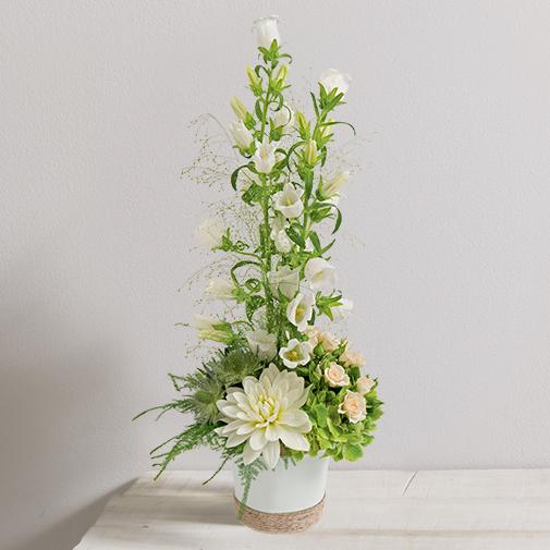 Bouquet de fleurs Paso doble