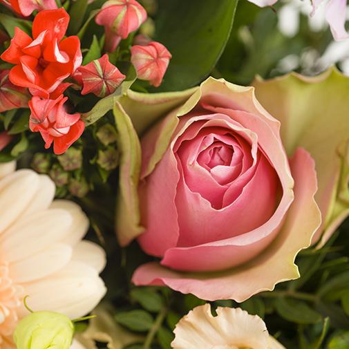 Bouquet de fleurs Rumba et son vase offert