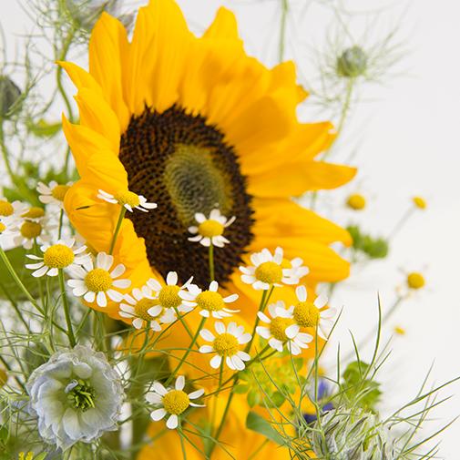 Bouquet de fleurs Samba
