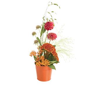 Composition florale Feu