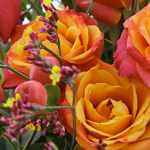 Bouquet de fleurs Narva