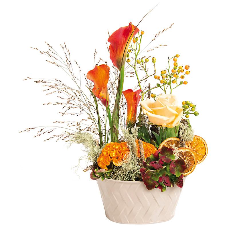 coupe de plantes orangette interflora. Black Bedroom Furniture Sets. Home Design Ideas