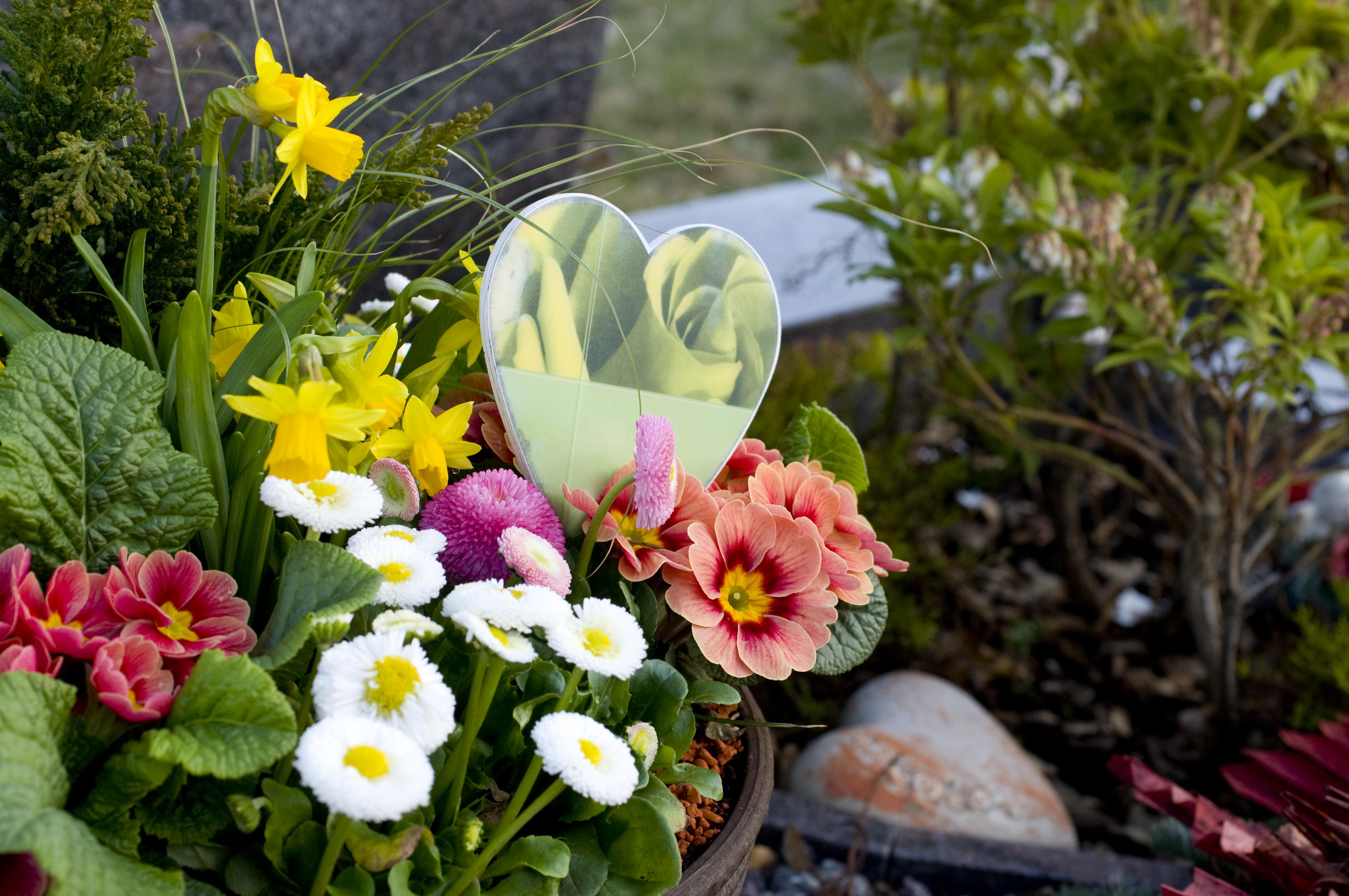 Fleurs toussaint livraison fleurs sur tombe interflora for Fleuriste qui livre a domicile