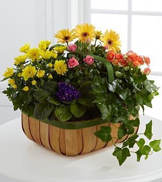 Bouquet de fleurs The FTD® Gentle Blossoms™ Basket