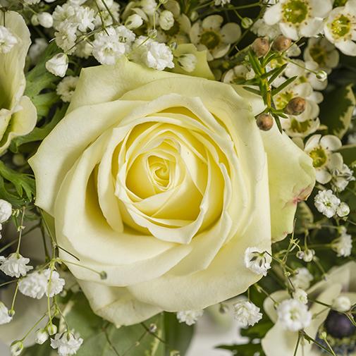 Bouquet de fleurs Amour absolu