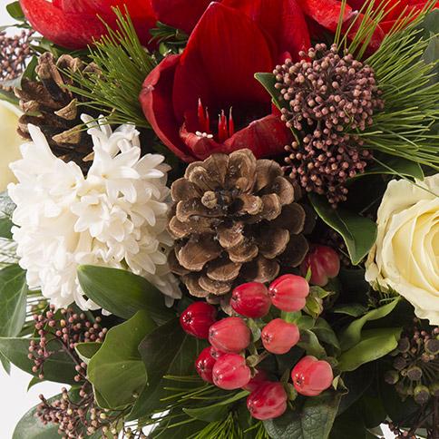 Bouquet de no l rouge et blanc avec amaryllis interflora for Amaryllis de noel