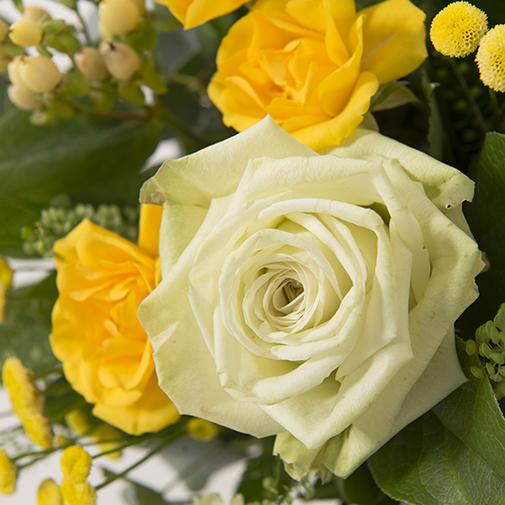 Fleurs et cadeaux Sunshine et son écrin d'amandes au chocolat