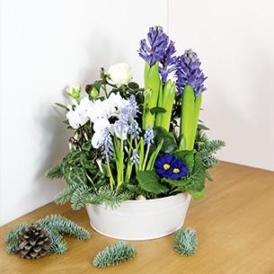 Bouquet de fleurs Douce nuit