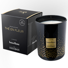 Bougie Estéban-Interflora