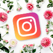 Interflora sur Instagram