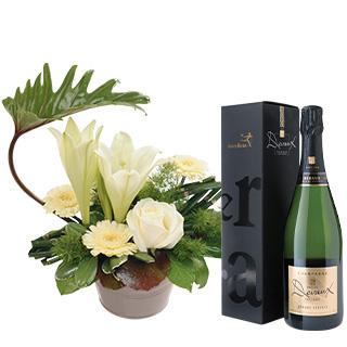 Chou et son champagne Devaux Interflora