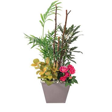 Plantes vertes et fleuries Déclic