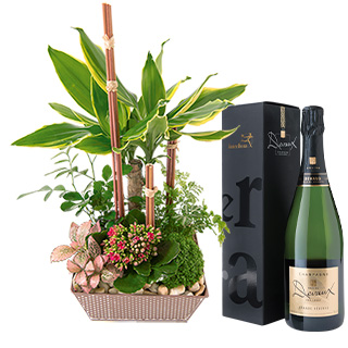 Mikado et son champagne Devaux Interflora