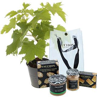 Pied de vigne & son coffret apéritif FAUCHON